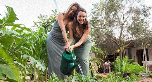 可折叠家用沼气池,这款垃圾转化神器节能又环保