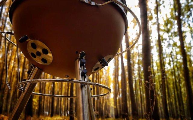 满足你的一天两顿小烧烤 ---- 欧文的派对星球创意烤炉