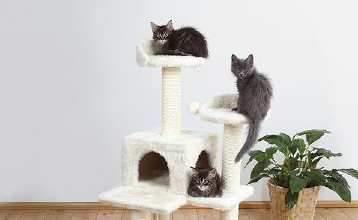 Trixie宠物猫爬架:天然剑麻制造,材质结实又安全