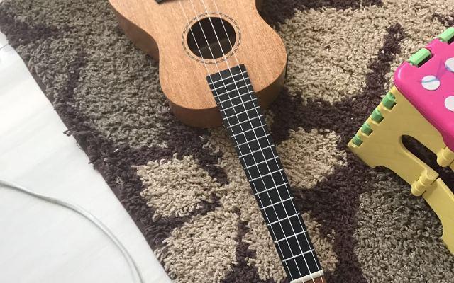 给我带来美妙音乐的小乐器,小巧机身大能量