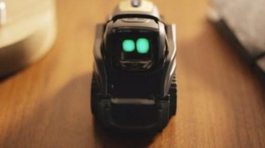 老外发明智能玩具!撸不到猫怎么办?你可以撸它啊!