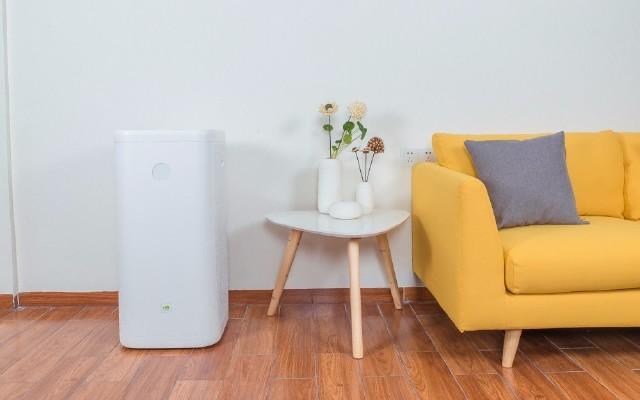 老罗的第一台空气净化器,是情怀还是实力? — 畅呼吸空气净化器体验 | 视频