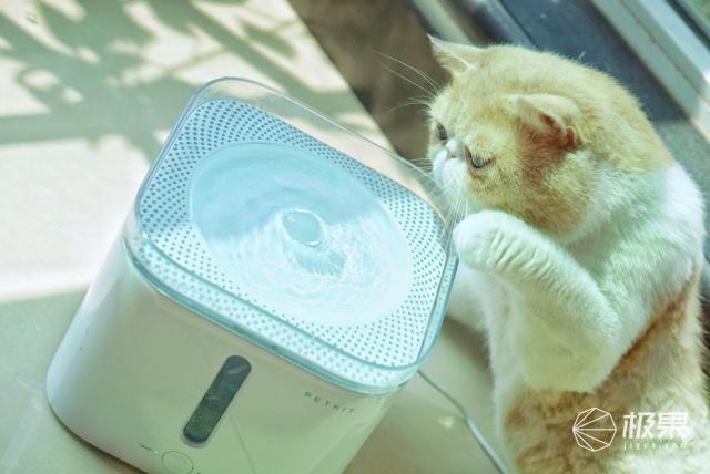小佩(Petkit)PK9090041N015宠物智能饮水机