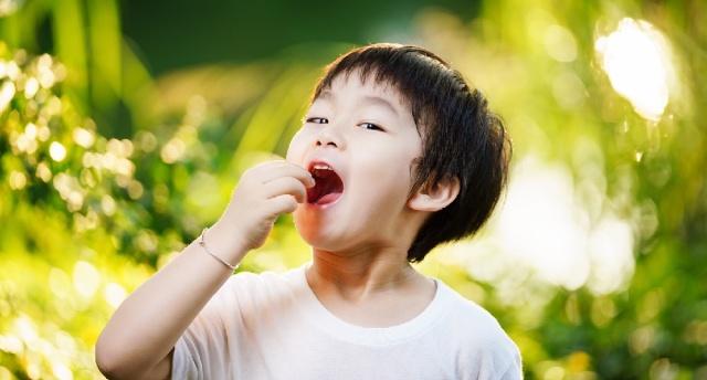 干货 | 晶莹剔透,户外儿童闪光灯用法解析——索尼HVL-F60RM 闪光灯