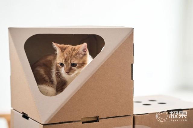 Acatthing5件套猫公寓