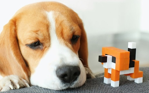 敢和LEGO叫板的磁铁积木,拼接姿势更多能玩半辈子!