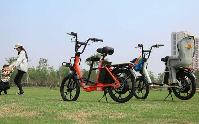 上海永久袋鼠iK1家用电踏车