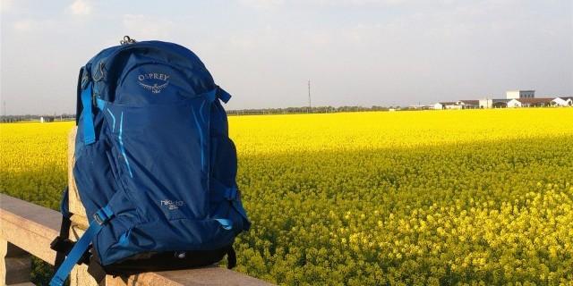 专业背负 透气轻便,让你旅行路上举足若轻 —小鹰 骇客 26L 户外徒步旅行包