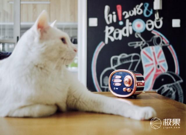 猫王(Catking)米字旗收音机