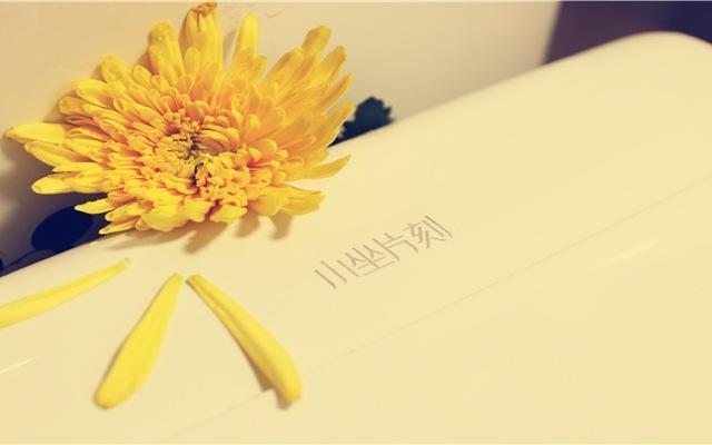 一朵凋零菊花与马桶盖的真实邂逅 — 小坐片刻智能马桶盖体验 | 视频