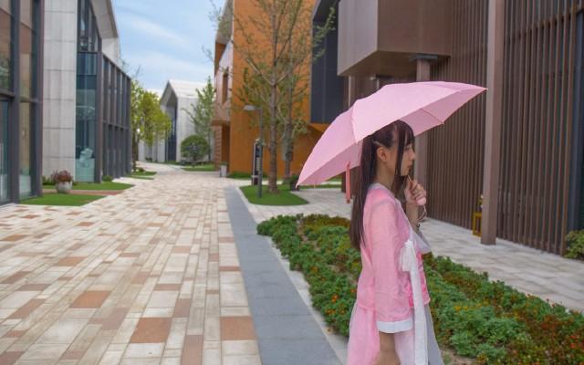 荷叶仿生纳米雨伞时尚轻便,让妹子爱不释手 — 小妹优品纳米疏水玲珑伞测评