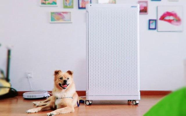 安美瑞X8空气净化器测评,家有宠物却无一丝异味
