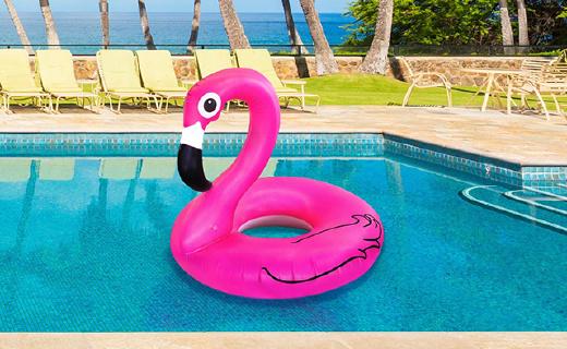 旱鸭子不会游泳怎么办?这个大鹅让你这个夏天闪耀整个泳池