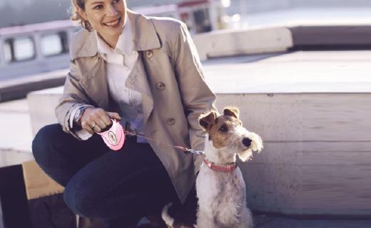 Petio宠物牵引绳:反射材料配LED灯,晚上遛狗更安心