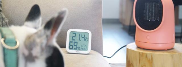 颜值与实力兼具,陶瓷发热冬日里暖心小宝贝 — 呆呆暖风机体验   视频