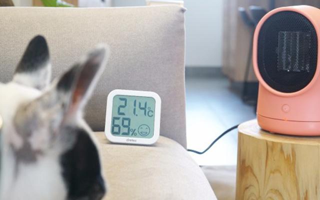 颜值与实力兼具,陶瓷发热冬日里暖心小宝贝 — 呆呆暖风机体验 | 视频
