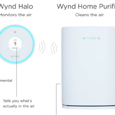 Wynd  Wynd Halo + Home Purifier