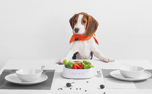 小佩FRESH智能抗菌碗:精准称重,科学喂养方案让宠物更健康
