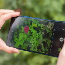 焦内锐焦外柔,大光圈拍照就是自然,荣耀Note10评测