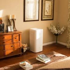 5分钟净化整个房子,家居空气质量的守护神 — 畅呼吸空气净化器评测 | 视频