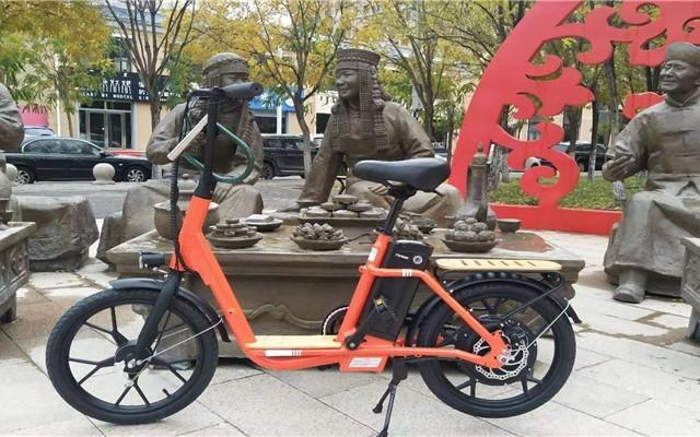 轻巧能上牌的上海永久袋鼠iK1电踏车,短途出行首选