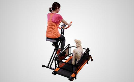 能让你和宠物一起锻炼的跑步机,宅在家里也健康