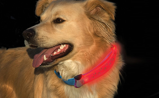 奈爱NDCC-03宠物反光带:2种模式续航100小时,夜间遛宠更安全