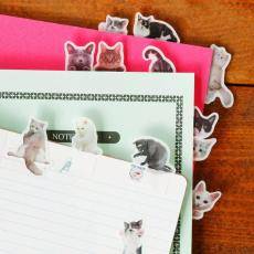 Polar Bear  猫咪简笔画漫画便利贴便签手帐贴留言纸