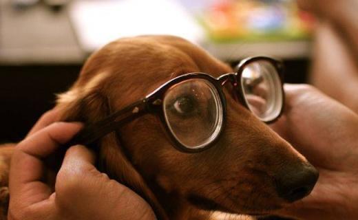 这些逼格超高的眼镜,带上立即变潮男