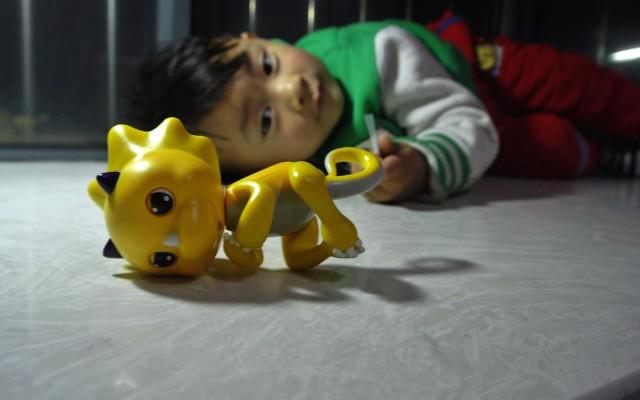 陪伴孩子的指尖精灵——恐龙BABY体验