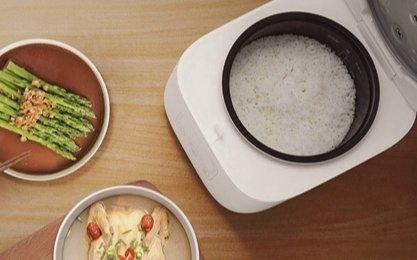 锅小火力大!小米生态链上新了解一下:米家小饭煲169元众筹!