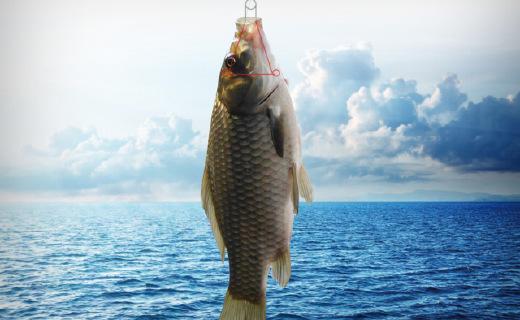 """享受钓鱼本身的乐趣,17年红点设计作品""""无伤害鱼钩"""""""