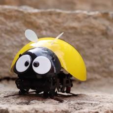 史上最不正经小蜜蜂,却是哄孩子开心的法宝 — DFRobot逗逗虫机器人体验