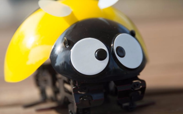 DFRobot逗逗虫机器人